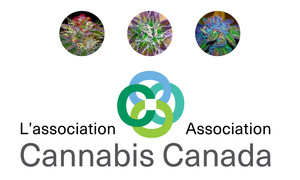 <b>Cannabis Canada Association</b><br />New name and branding.
